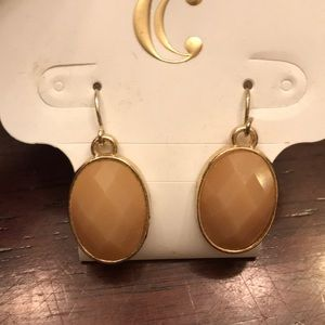 Charming Charlie's Brown Light Earrings!🥂